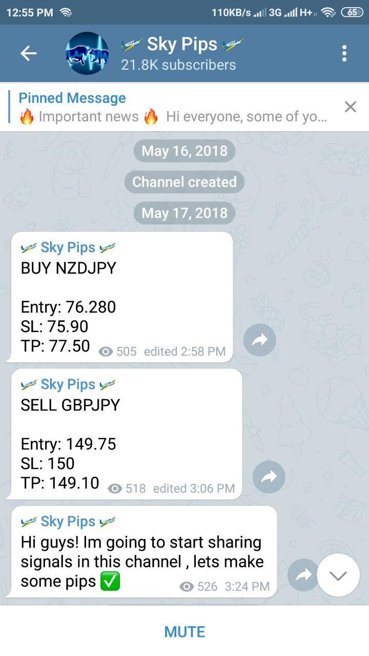 Skypips Forex Signals Reviews